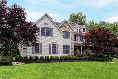 Bridgewater Twp. Single Family Home For Sale: 2 Yohn Dr