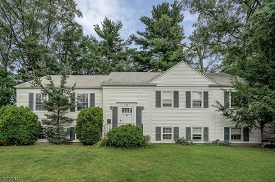Millburn Twp. Single Family Home For Sale: 5 Woodcroft Pl