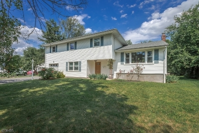 Scotch Plains Twp. Single Family Home For Sale: 12 Happel Ct
