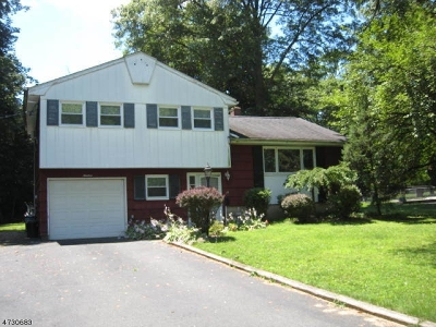 East Hanover Twp. Single Family Home For Sale: 19 Golf Ln