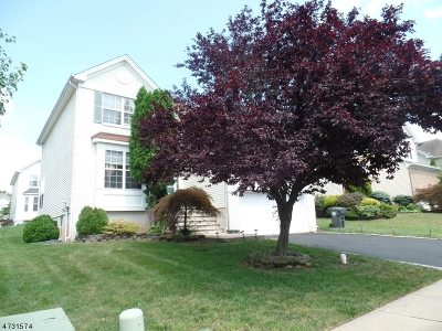 Bridgewater Twp. Single Family Home For Sale: 22 Sterling Dr