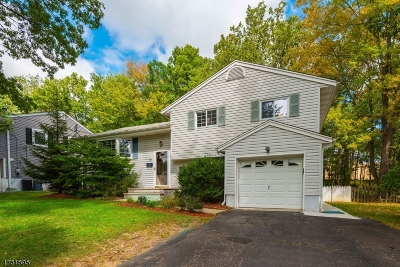 Parsippany Single Family Home For Sale: 19 Singac Ct