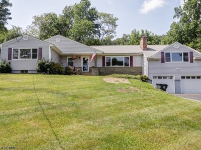Morris Twp. Single Family Home For Sale: 11 Raynor Rd