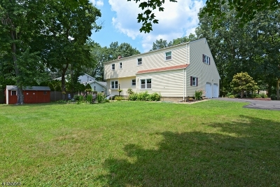 Bridgewater Twp. Single Family Home For Sale: 76 Ivy Ln