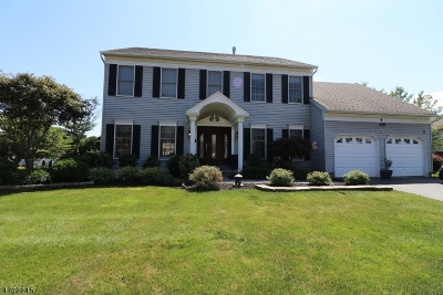 South Brunswick Twp. Single Family Home For Sale: 4 Eleanor Dr