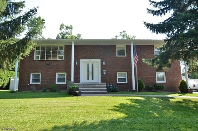 East Hanover Twp. Single Family Home For Sale: 36 Grant Ave