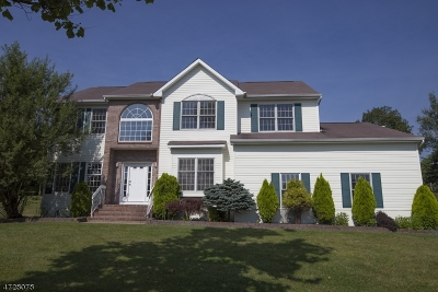 Roxbury Twp. Single Family Home For Sale: 2 Driftway Ct
