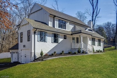 Berkeley Heights Twp. Single Family Home For Sale: 6 Pine Grove Rd