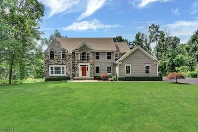 Bernards Twp. Single Family Home For Sale: 130 Lake Rd