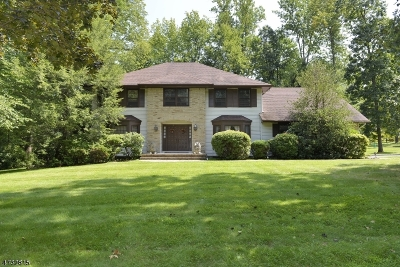 Parsippany-Troy Hills Twp. Single Family Home For Sale: 1 Waterloo Dr
