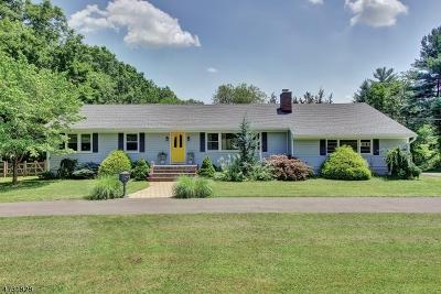 Bernards Twp. Single Family Home For Sale: 49 Haas Rd