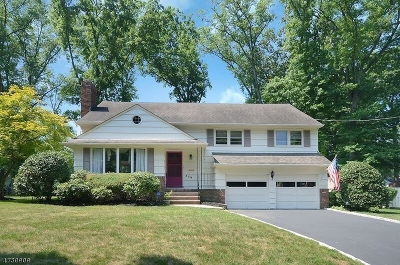 Scotch Plains Twp. Single Family Home For Sale: 328 Fawnridge Dr
