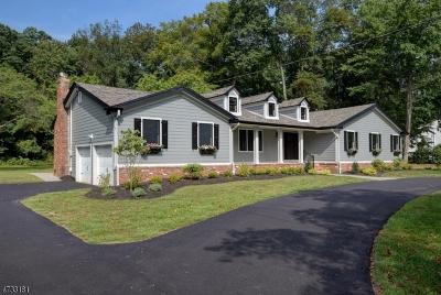 Scotch Plains Twp. Single Family Home For Sale: 8 Jacobs Ln