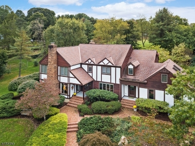 Peapack Gladstone Boro Single Family Home For Sale: 10 Deer Path