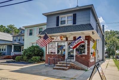 Roselle Park Boro Multi Family Home For Sale: 314 W Webster Ave