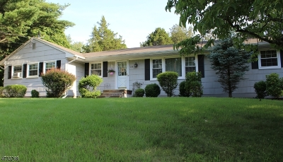 Bridgewater Twp. Single Family Home For Sale: 732 Van Nest Dr