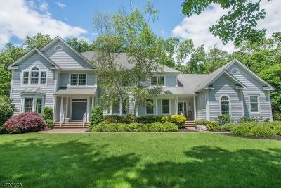 Bernards Twp. Single Family Home For Sale: 22 High Meadow Ln