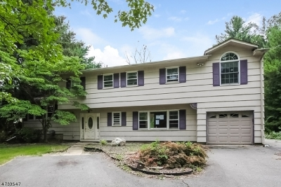 Parsippany Single Family Home For Sale: 209 E Halsey Rd