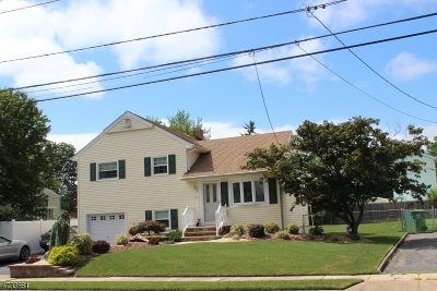 Edison Twp. Single Family Home For Sale: 33 Heathcote Ave