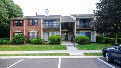 Bernards Twp. Condo/Townhouse For Sale: 121 Woodward Ln