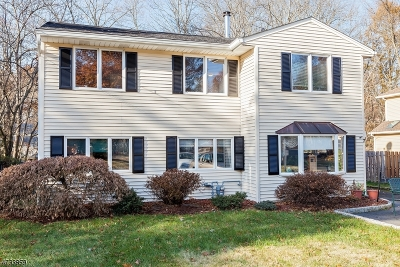 New Providence Boro Single Family Home For Sale: 7 Birch Pl