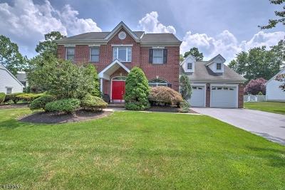 South Brunswick Twp. Single Family Home For Sale: 10 Wharton Ct
