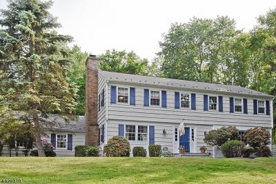 Bernardsville Boro Single Family Home For Sale: 36 Winding Way