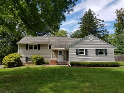 Bridgewater Twp. Single Family Home For Sale: 1089 Eastbrook Rd
