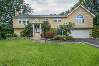 Parsippany Single Family Home For Sale: 45 Elmwood Dr