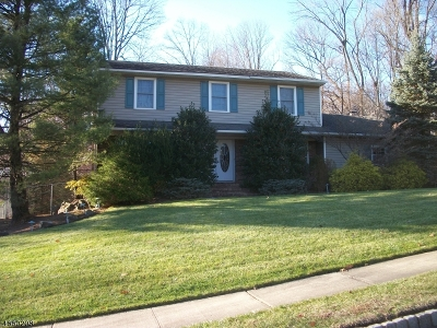 Parsippany-Troy Hills Twp. Single Family Home For Sale: 28 Whitewood Dr