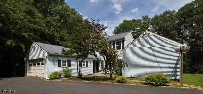 Bedminster Twp. Single Family Home For Sale: 155 Deer Haven Rd