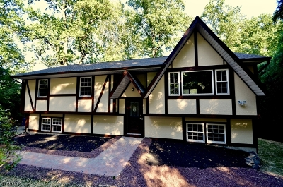 Randolph Twp. Single Family Home For Sale: 38 Grist Mill Rd