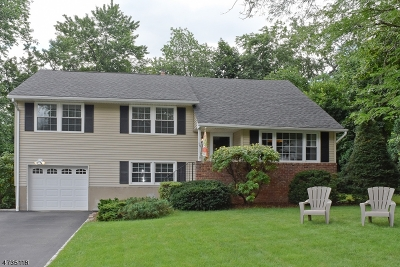 Morris Twp. Single Family Home For Sale: 15 Terry Dr
