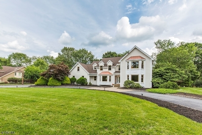 Randolph Twp. Single Family Home For Sale: 2 Castle Ct