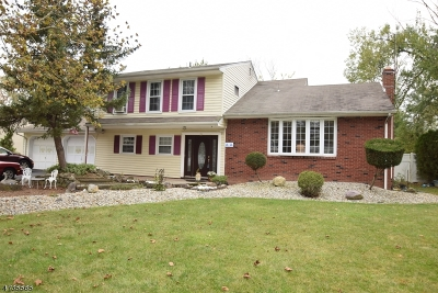 Parsippany Single Family Home For Sale: 9 Holly Glen Ln