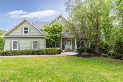 Bernards Twp. Single Family Home For Sale: 33 Whittingham Rd