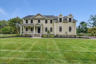 Bernards Twp. Single Family Home For Sale: 59 Washington Ave