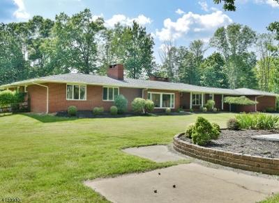 Bernards Twp. Single Family Home For Sale: 44 Stockmar Dr