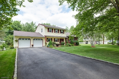 Parsippany-Troy Hills Twp. Single Family Home For Sale: 1060 Vail Rd