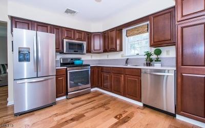 Bernardsville Boro Single Family Home For Sale: 20 Garibaldi St
