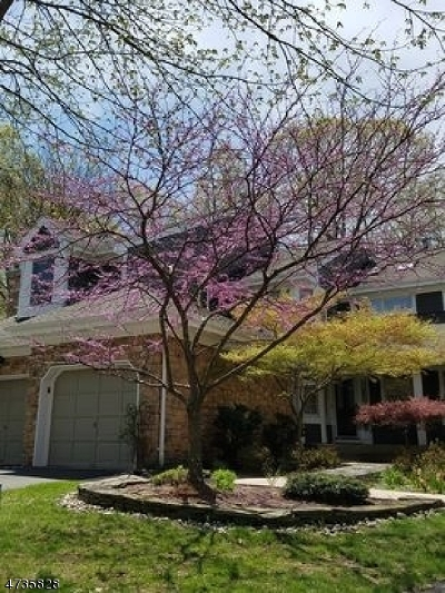 South Brunswick Twp. Condo/Townhouse For Sale: 34 Ginger Ct