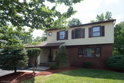 Edison Twp. Single Family Home For Sale: 17 Stacey St