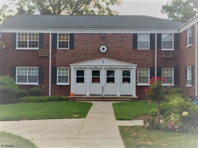 ROSELLE PARK Condo/Townhouse For Sale: 7b W Roselle Ave #B
