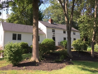 Bedminster Twp. Single Family Home For Sale: 10 Ski Hill Dr