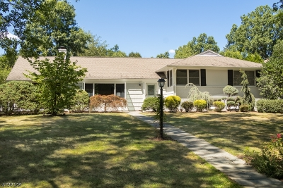 Chatham Twp. Single Family Home For Sale: 44 Rolling Hill Dr