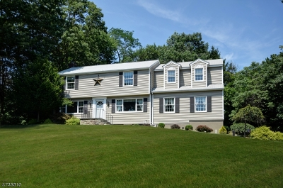 Mountainside Boro Single Family Home For Sale: 303 Partridge Run