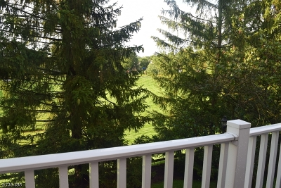 Bedminster Twp. Condo/Townhouse For Sale: 54 Wescott Rd