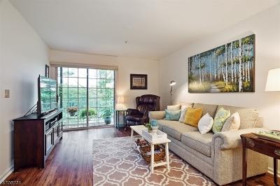 Bernards Twp. Condo/Townhouse For Sale: 164 Potomac Dr