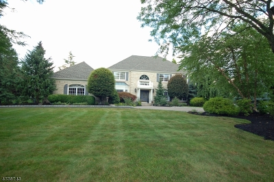 Bridgewater Twp. Single Family Home For Sale: 3 Hawkes Ct