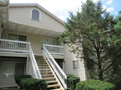 Bedminster Twp. Condo/Townhouse For Sale: 34 Tansy Ct